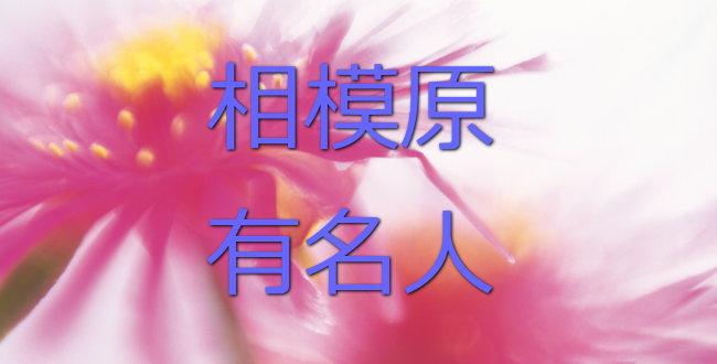 「田中陽希さん (相模原の有名人)」のアイキャッチ画像