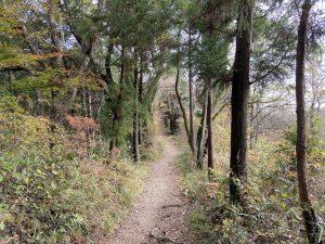 評議原の散策路