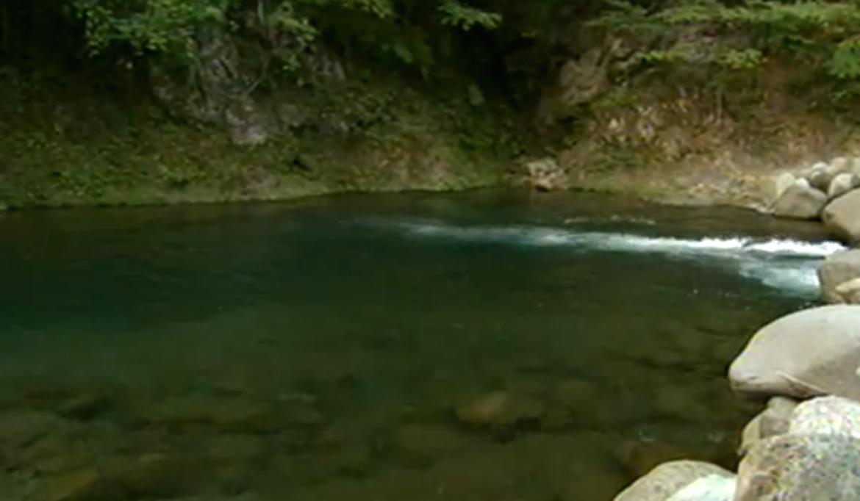 「神奈川県相模原市の道志川で中学1年生溺れて死亡」のアイキャッチ画像