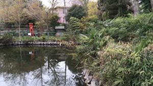 田名・大杉の池
