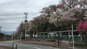 丸山城(上溝)