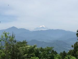 小仏城山から望む富士山