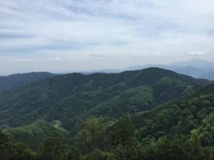 景信山から望む高尾山と小仏城山