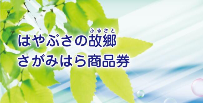「はやぶさの故郷【さがみはら商品券】2000円分のプレミアム付き」のアイキャッチ画像