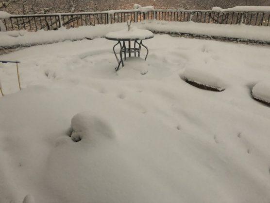 相模原大雪(2018年1月)