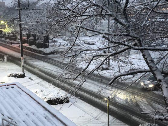 相模原の積雪情報